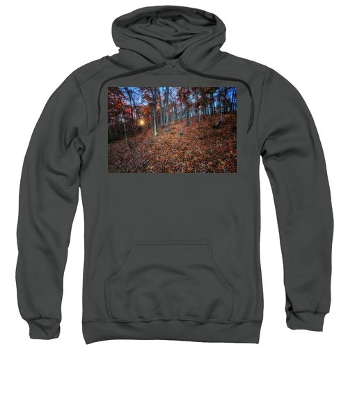 Nature's Carpet Sweatshirt
