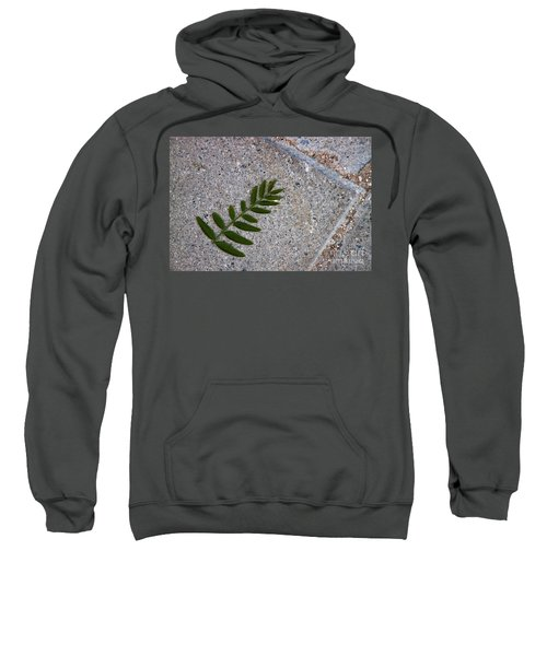 Nature's Trace Sweatshirt