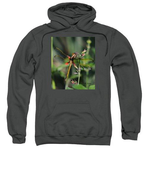 Needham's Skimmer Sweatshirt