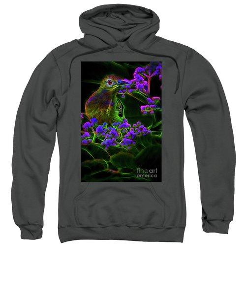 Neon Sunbird Sweatshirt