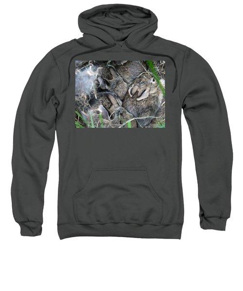 Nestled In Their Den Sweatshirt