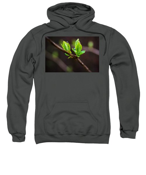 New Growth In The Rain Sweatshirt