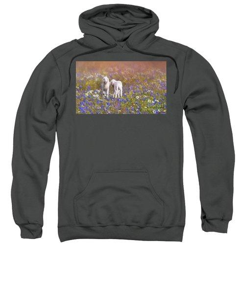 New Life Sweatshirt