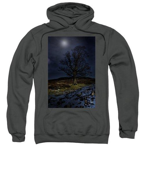 Nidderdale Tree Sweatshirt