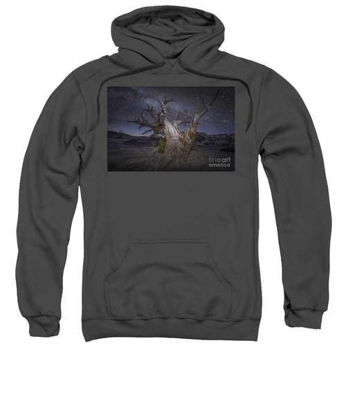Night Dreamer Sweatshirt