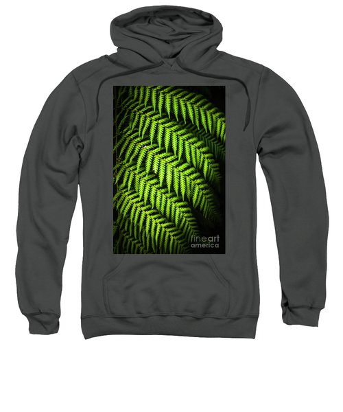 Night Forest Frond Sweatshirt