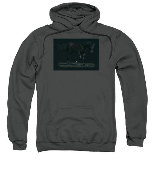 Night Mare Sweatshirt
