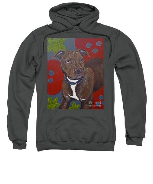 Niko The Pit Bull Sweatshirt