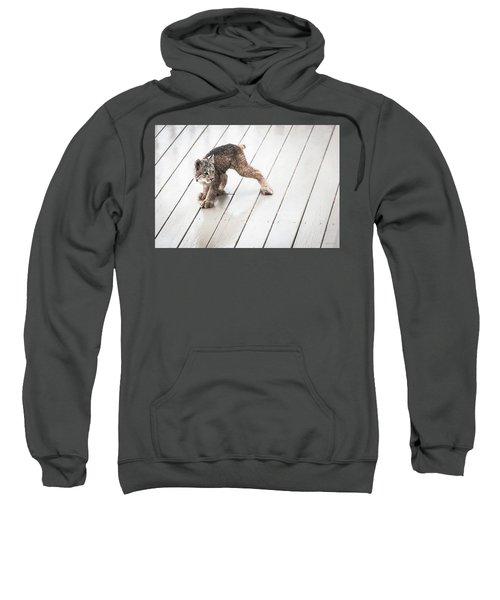 Ninja Lynx Kitty Sweatshirt