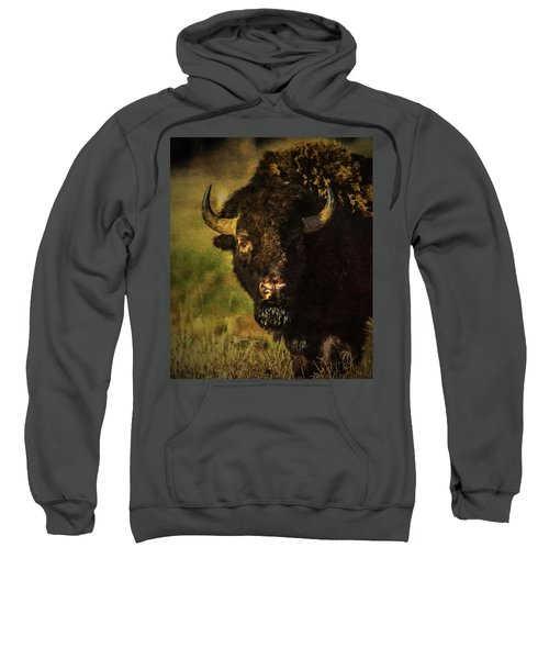 North American Buffalo Sweatshirt
