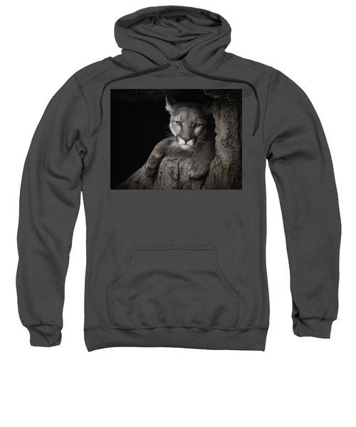 Not A Happy Cat Sweatshirt