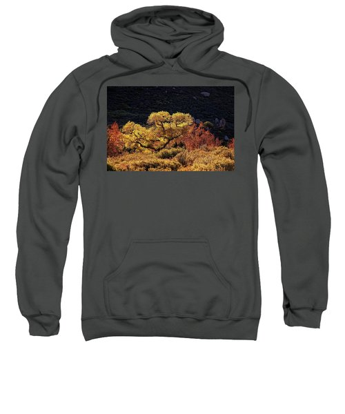 November In Arizona Sweatshirt