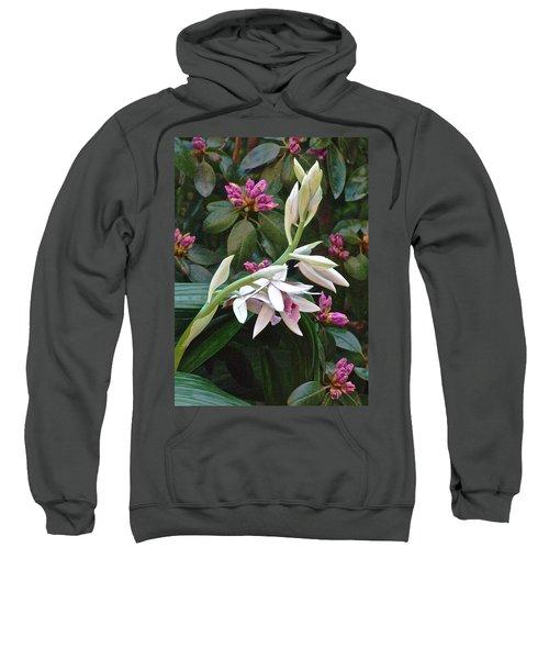 Nun Orchid Sweatshirt