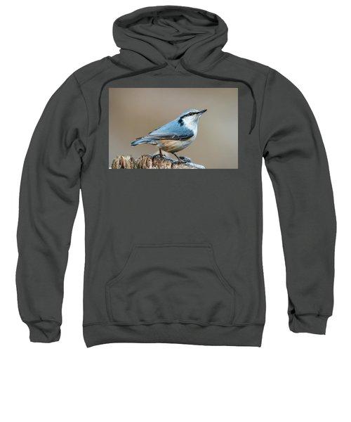 Nuthatch's Pose Sweatshirt