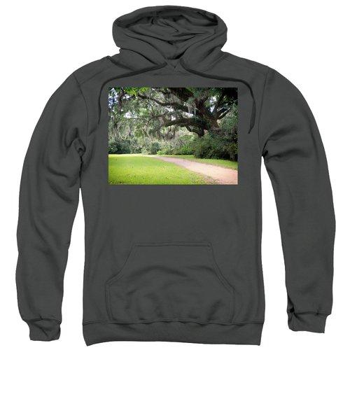 Oak Over The Trail Sweatshirt