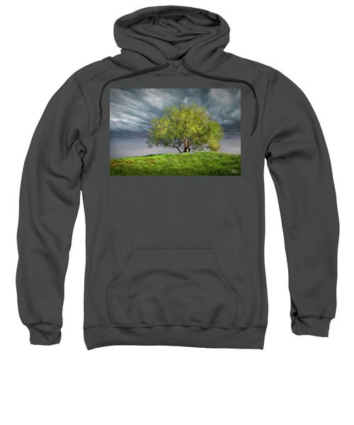 Oak Tree With Tire Swing Sweatshirt