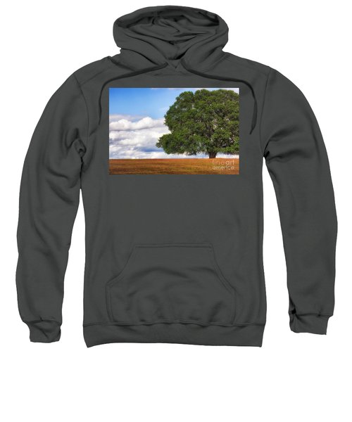 Oaktree Sweatshirt