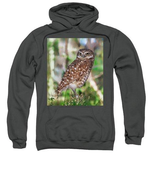 Observer Sweatshirt