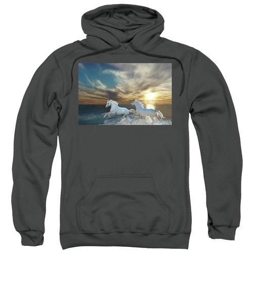 Ocean Play Sweatshirt