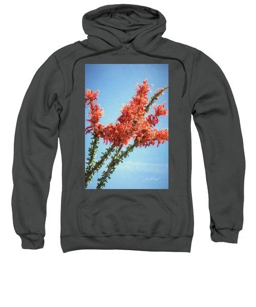 Ocotillo In Bloom Sweatshirt