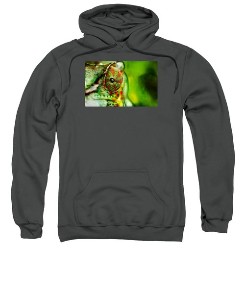 Octupus ..  Sweatshirt