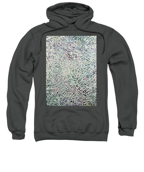 28-offspring While I Was On The Path To Perfection 28 Sweatshirt