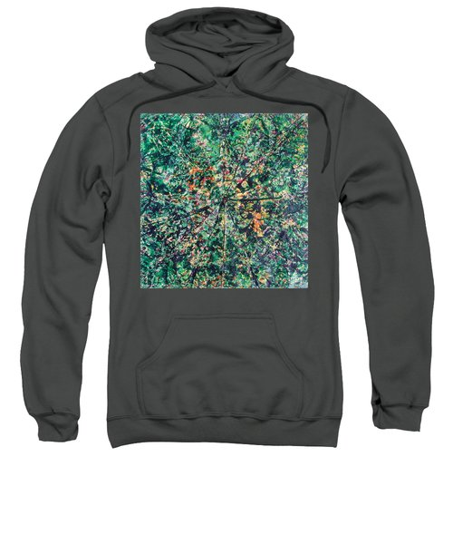 43-offspring While I Was On The Path To Perfection 43 Sweatshirt
