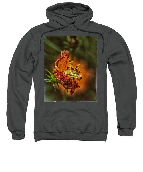 Oh Orange Juice Sweatshirt