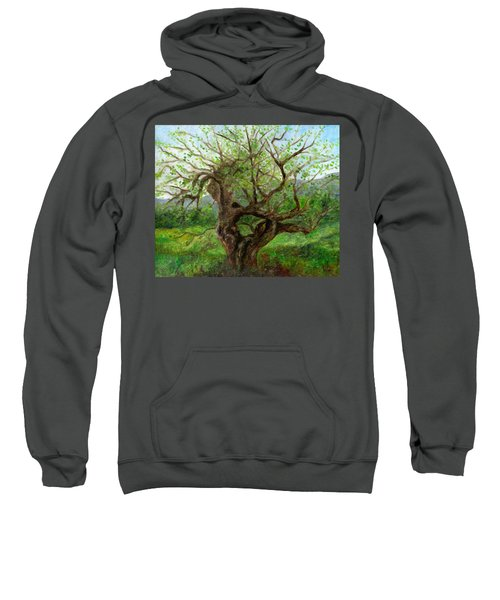 Old Apple Tree Sweatshirt