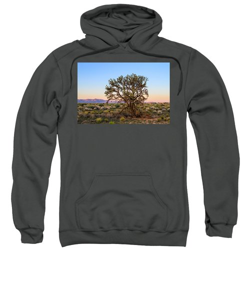 Old Growth Cholla Cactus View 2 Sweatshirt