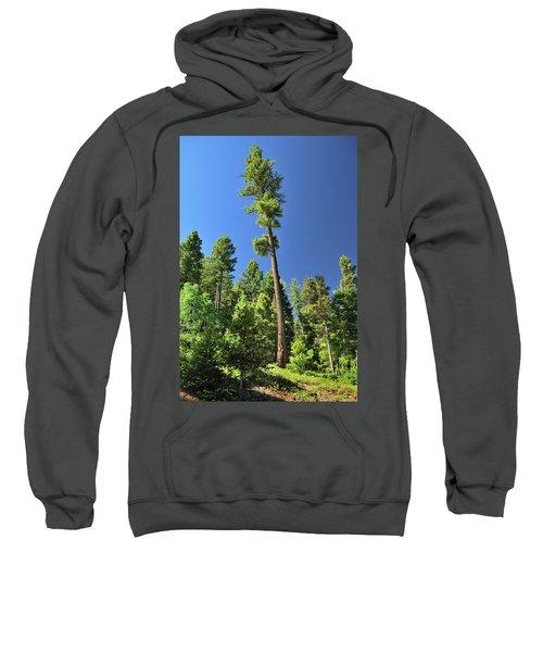 Old Ponderosa Sweatshirt