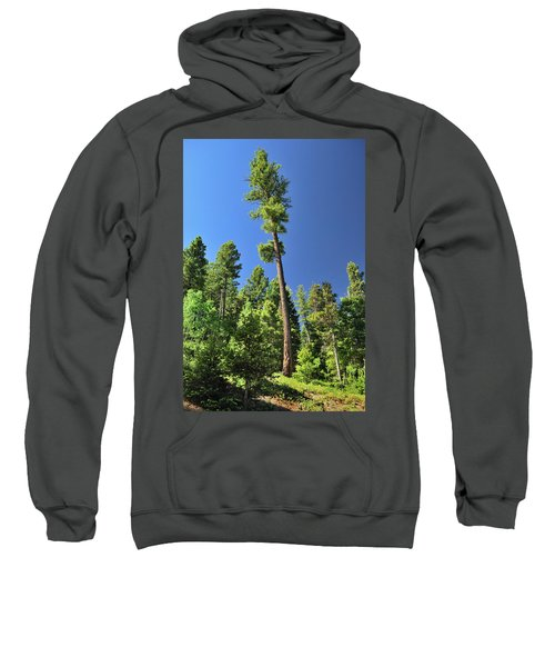 Old Ponderosa Sweatshirt