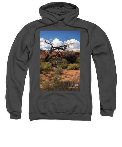 Old Tree In Capital Reef National Park Sweatshirt
