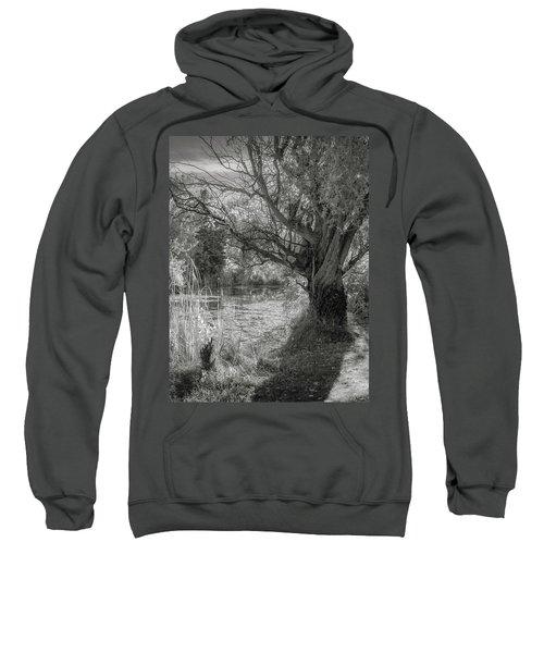 Old Willow Sweatshirt