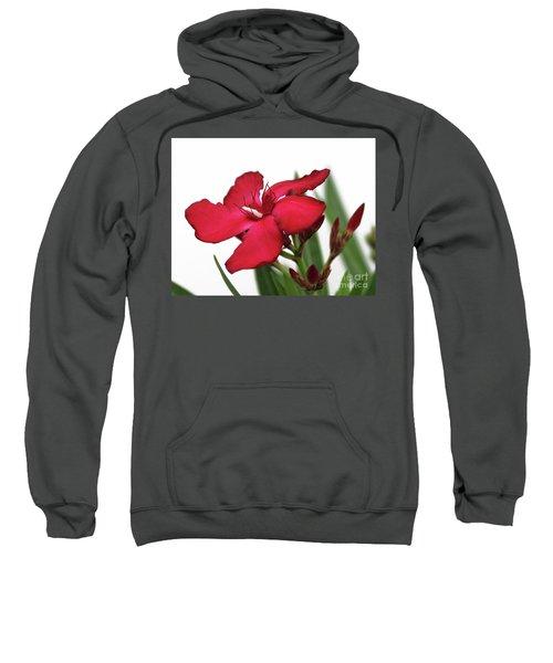 Oleander Blood-red Velvet 2 Sweatshirt