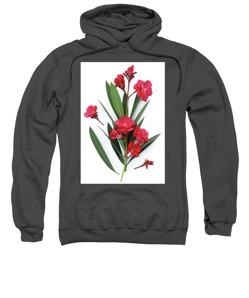 Oleander Geant Des Batailles 2 Sweatshirt