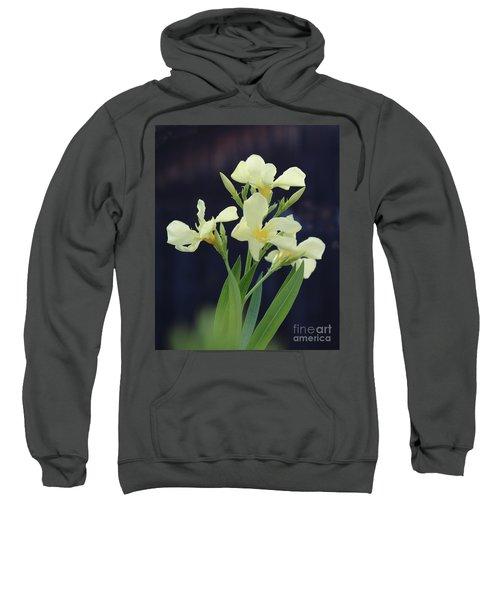 Oleander Marie Gambetta 2 Sweatshirt