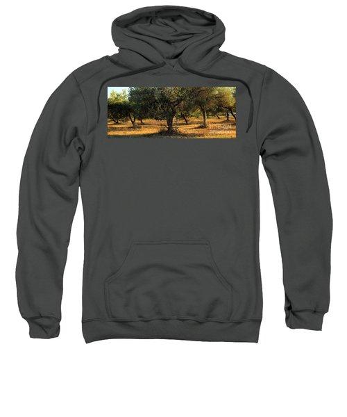 Olive Grove 3 Sweatshirt