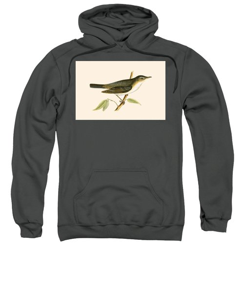 Olive Tree Warbler Sweatshirt by English School