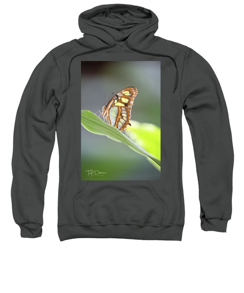 On A Leaf Sweatshirt
