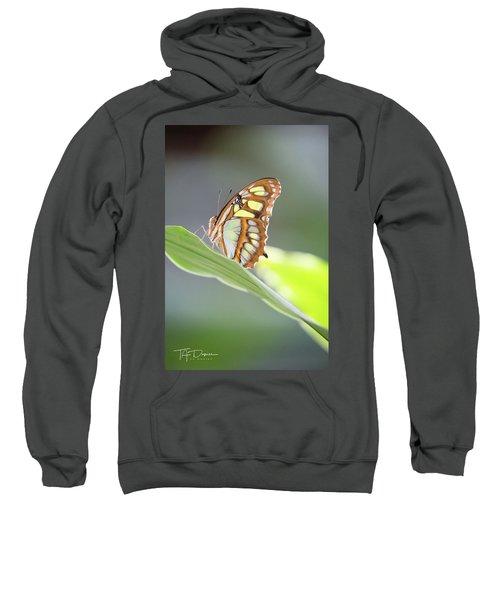 On A Leaf Sweatshirt