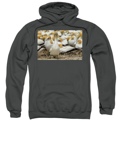 On Guard Sweatshirt