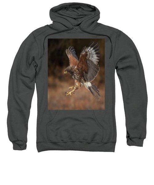 On Target Sweatshirt