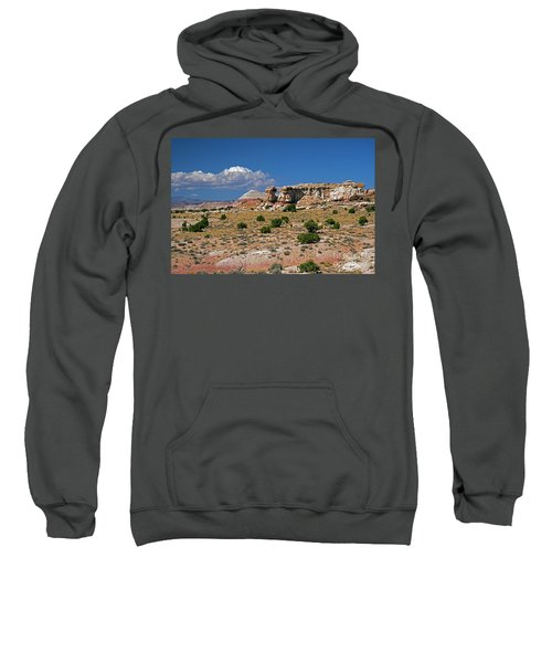 On The Road To Cathedral Valley  Sweatshirt