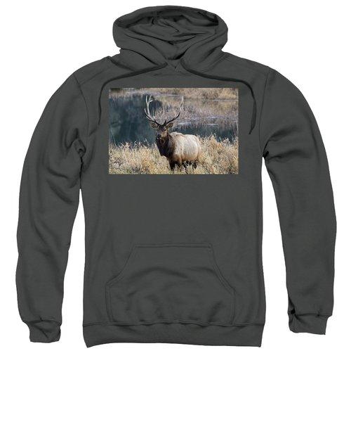 On Watch Sweatshirt