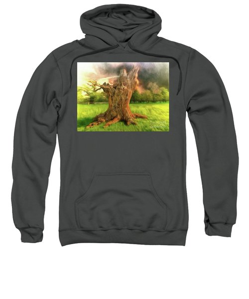 Once I Touched The Stars Sweatshirt