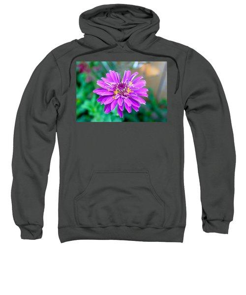 One Flower Circus Sweatshirt