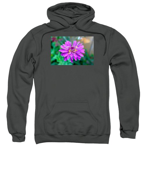 One Flower Circus Sweatshirt