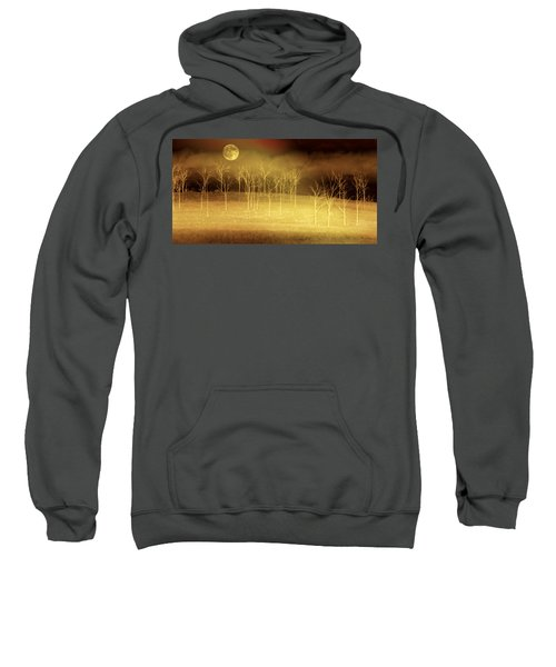 Only At Night Sweatshirt