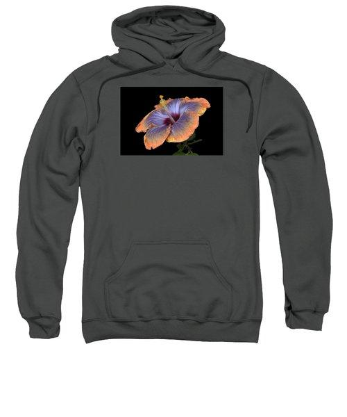 Orange-blue Hibiscus Sweatshirt